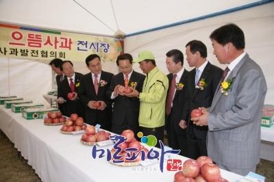제13회얼음골사과축제