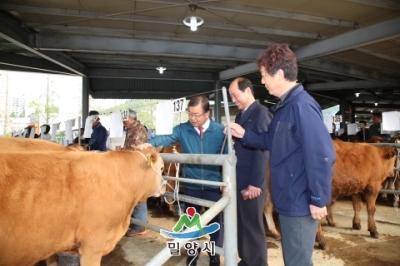 밀양 가축시장 방문